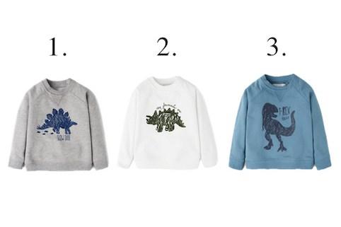 Boys Dinosaur Sweatshirt Little Spree