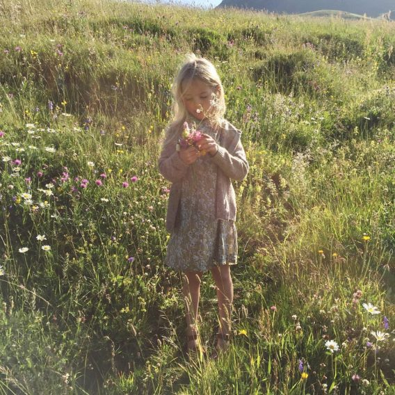Picking wild Alpine flowers in one of the prettiest meadowshellip